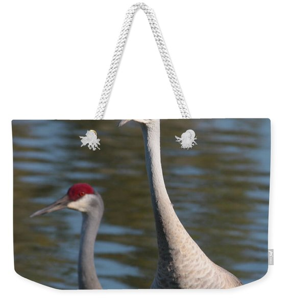 Sandhill Crane Couple By The Pond Weekender Tote Bag