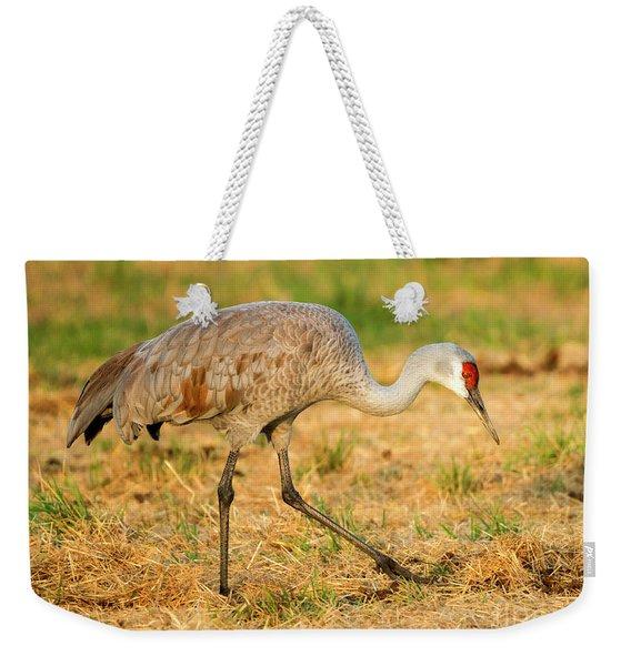Sandhill Crane Grazing Weekender Tote Bag