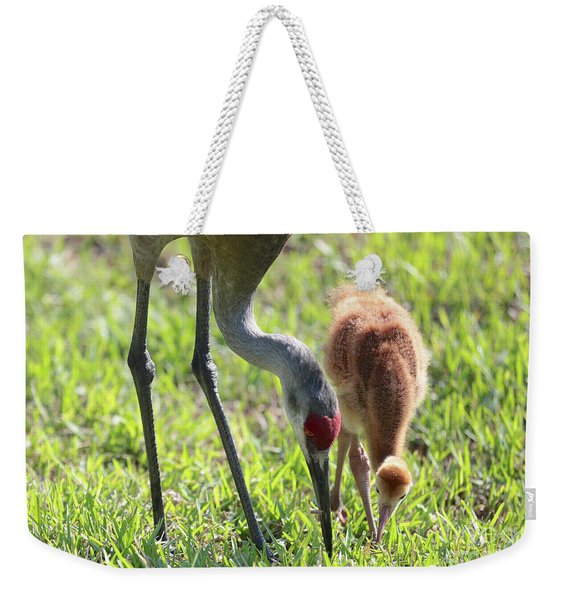 Sandhill Crane With Colt Weekender Tote Bag