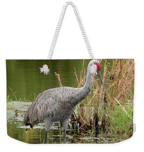 Sandhill In Beautiful Water Weekender Tote Bag