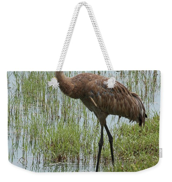 Sandhill In The Marsh Weekender Tote Bag
