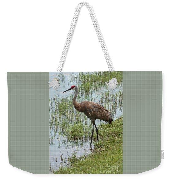 Sandhill In The Marsh Weekender Tote Bag