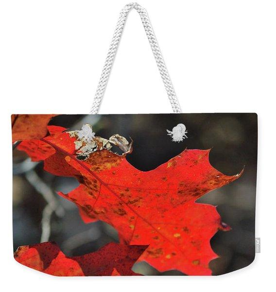 Scarlet Autumn Weekender Tote Bag