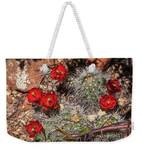 Scarlet Cactus Blooms Weekender Tote Bag