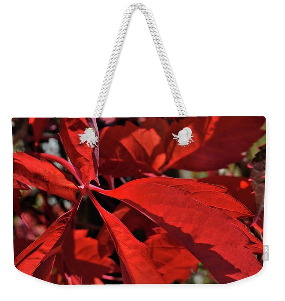 Weekender Tote Bag featuring the photograph Scarlet Intensity by Ron Cline