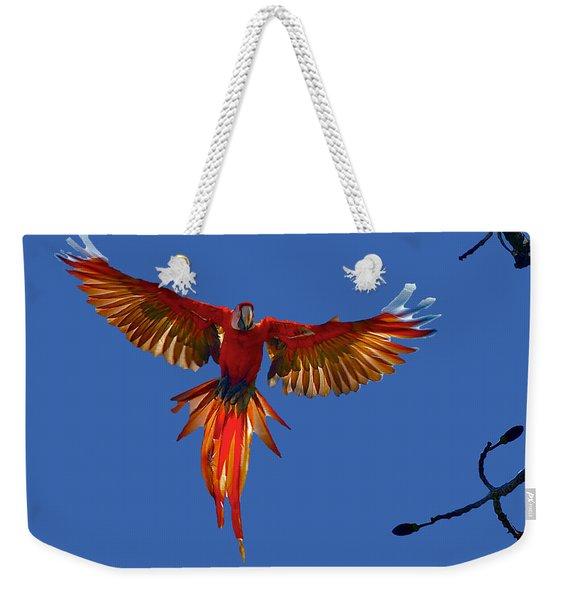 Scarlet Macaw On The Osa Peninsula Weekender Tote Bag