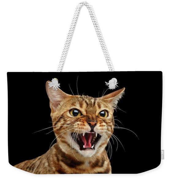 Scary Hissing Bengal Cat On Black Background Weekender Tote Bag