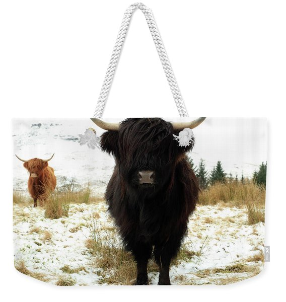 Scottish Black Highland Coo Weekender Tote Bag