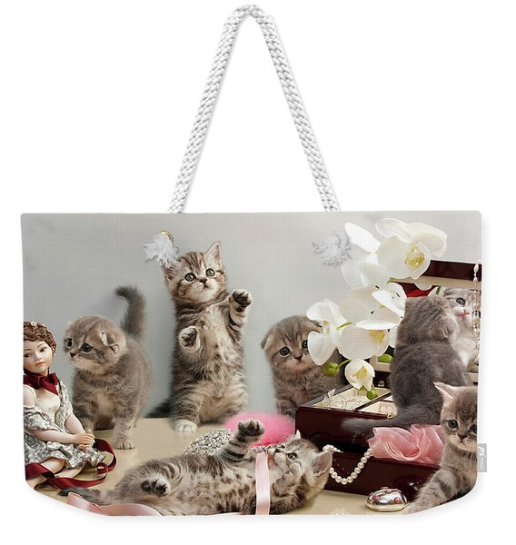Scottish Fold Cats Weekender Tote Bag