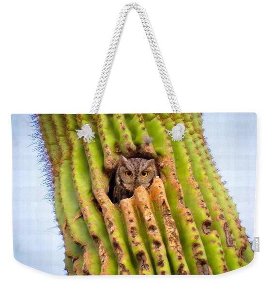 Screech Owl In Saguaro Weekender Tote Bag