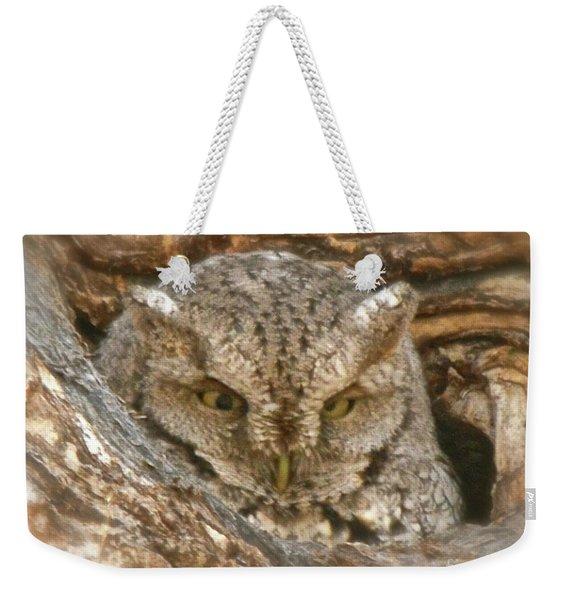 Screech Owl On Spring Creek Weekender Tote Bag