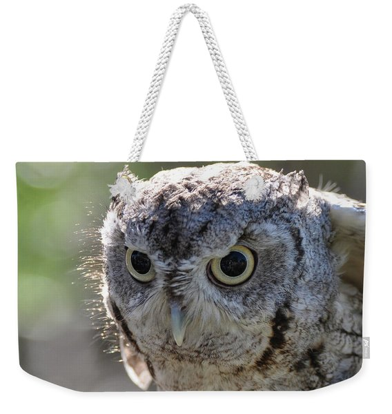 Screechowl Focused On Prey Weekender Tote Bag