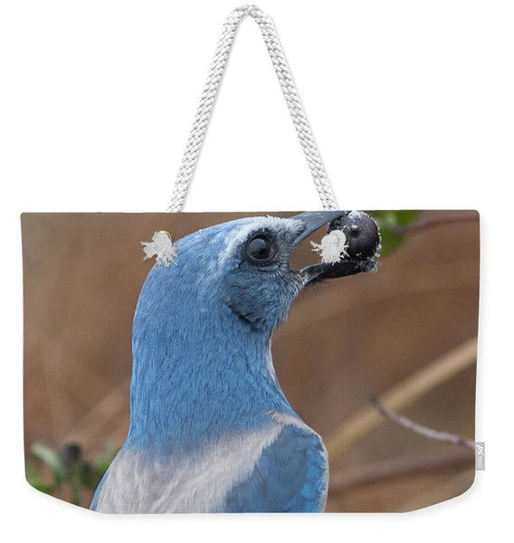 Scrub Jay With Acorn Weekender Tote Bag
