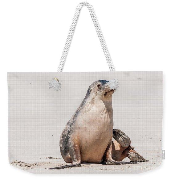 Sea Lion 1 Weekender Tote Bag