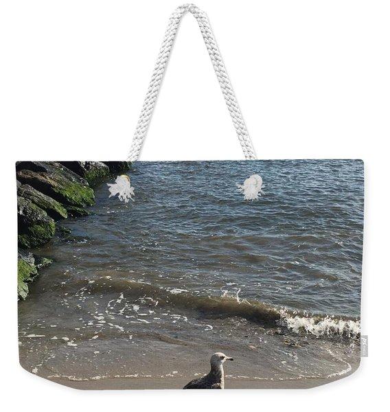 Sea Shadow Weekender Tote Bag