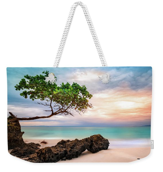 Weekender Tote Bag featuring the photograph Seagrape Tree by Mihai Andritoiu