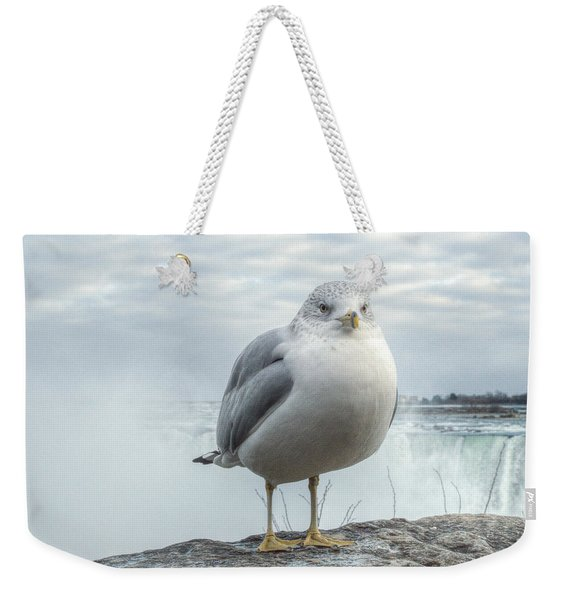 Weekender Tote Bag featuring the photograph Seagull Model by Garvin Hunter