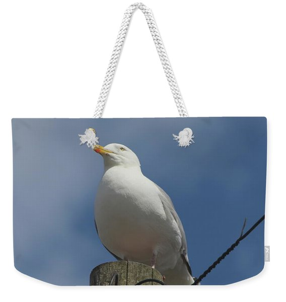 Seagull Perching. Weekender Tote Bag