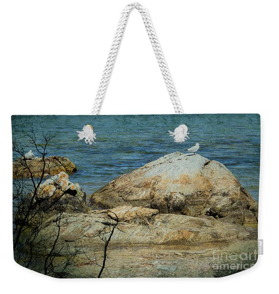 Seagull On A Rock Weekender Tote Bag