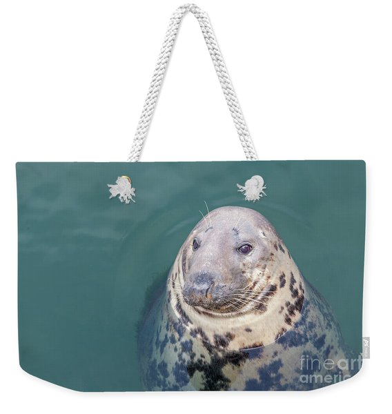 Seal With Long Whiskers With Head Sticking Out Of Water Weekender Tote Bag