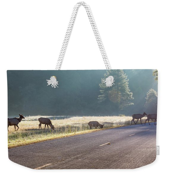 Searching For Greener Grass Weekender Tote Bag