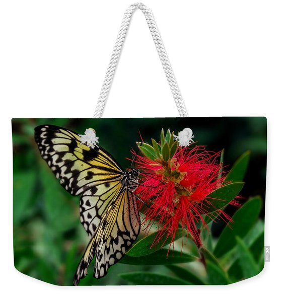Weekender Tote Bag featuring the photograph Searching For Nectar by Nick Bywater