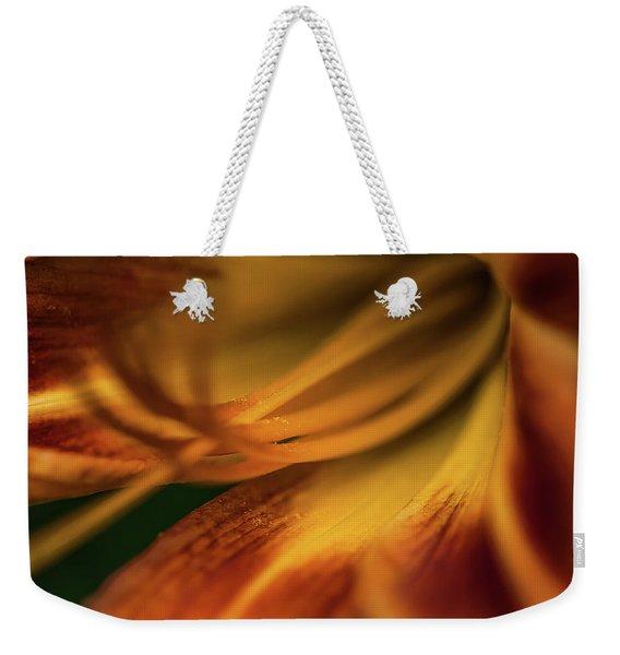 Seeds Of Life - 0964 Weekender Tote Bag