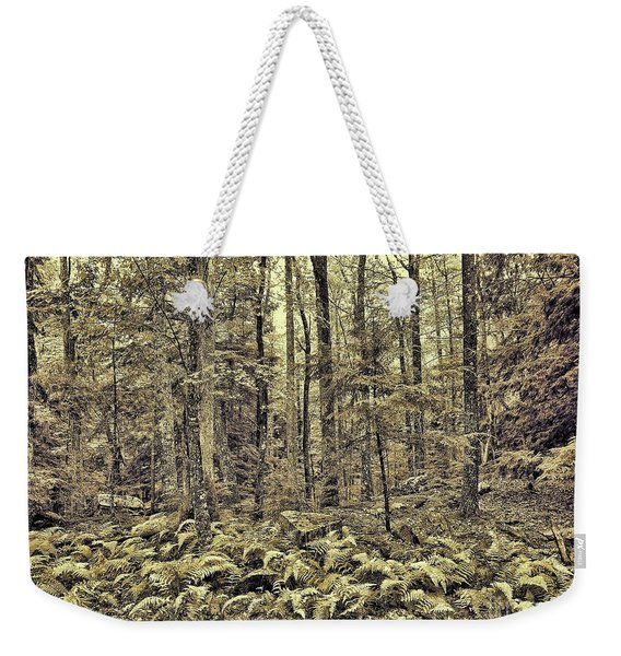 Sepia Landscape Weekender Tote Bag