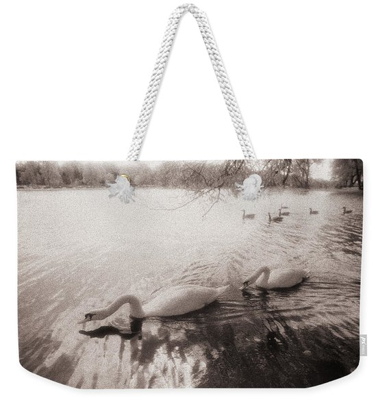 Weekender Tote Bag featuring the photograph Sepia Swans by Doug Gibbons