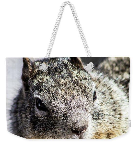 Serious Squirrel Weekender Tote Bag
