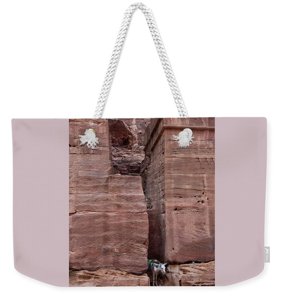 Weekender Tote Bag featuring the photograph Shade Is Good by Mae Wertz