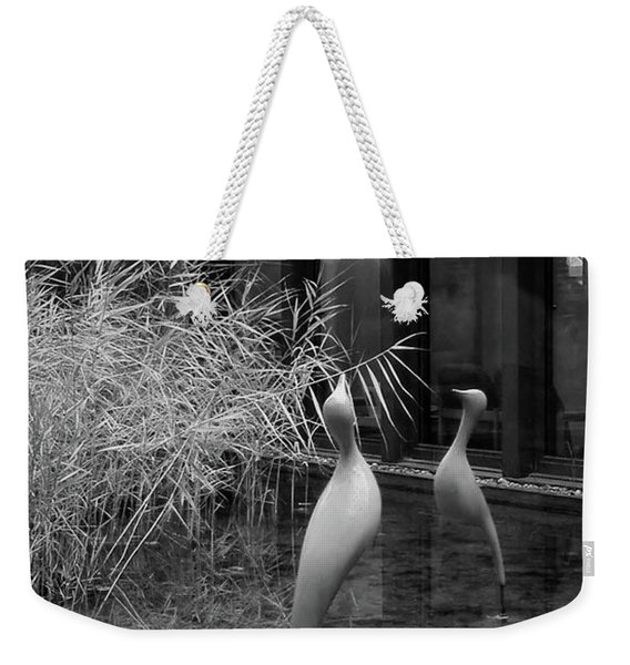 Shadow And Light 13 - Reflections - A Weekender Tote Bag