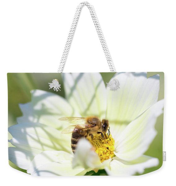 Weekender Tote Bag featuring the photograph Shadowy Bee by Brian Hale