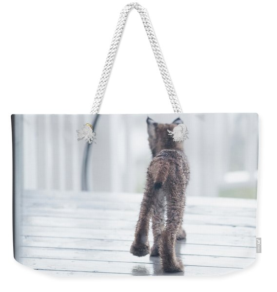 Weekender Tote Bag featuring the photograph Shake It Off by Tim Newton