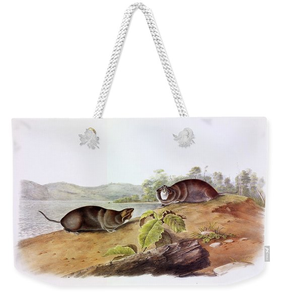 Shaped Pouched Rat Weekender Tote Bag