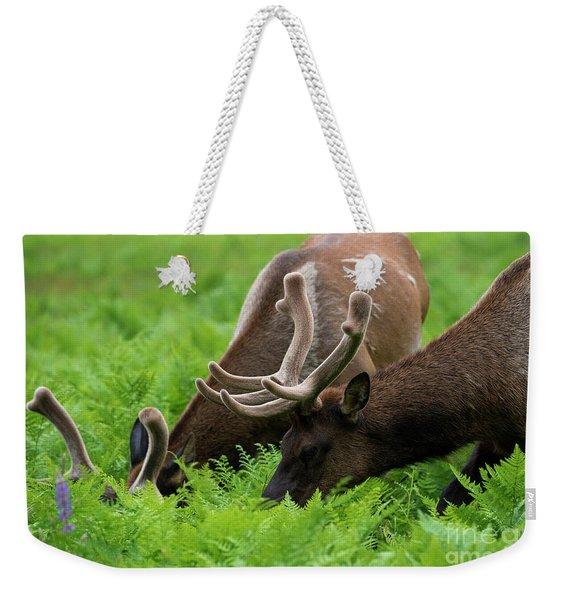 Sharing A Salad Weekender Tote Bag