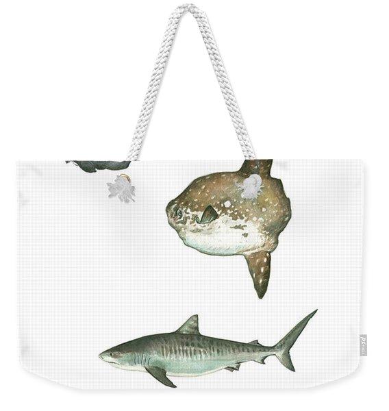 Sharks And Mola Mola Weekender Tote Bag