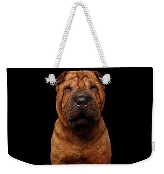 Sharpei Dog Isolated On Black Background Weekender Tote Bag