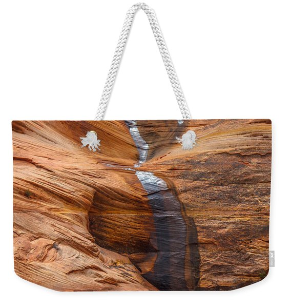 Weekender Tote Bag featuring the photograph Sheen by Laura Roberts