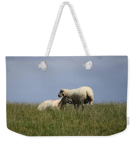 Sheep 4221 Weekender Tote Bag