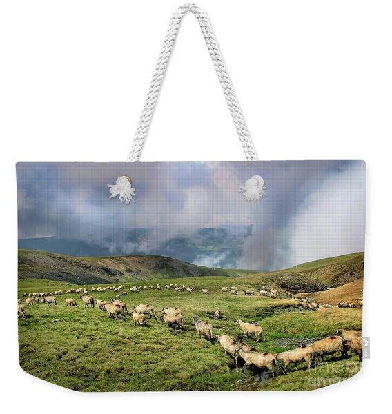 Sheep In Carphatian Mountains Weekender Tote Bag