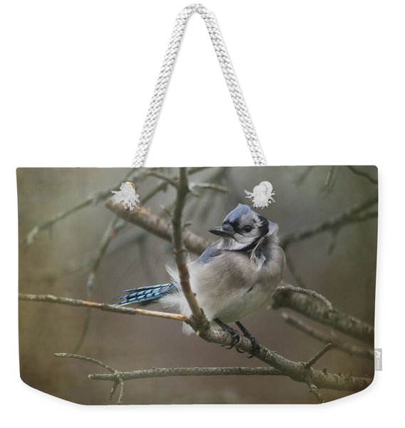 Shelter From The Wind Weekender Tote Bag