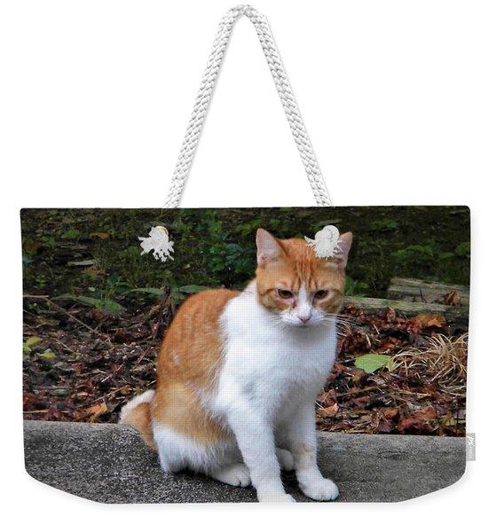 Shiloh Weekender Tote Bag