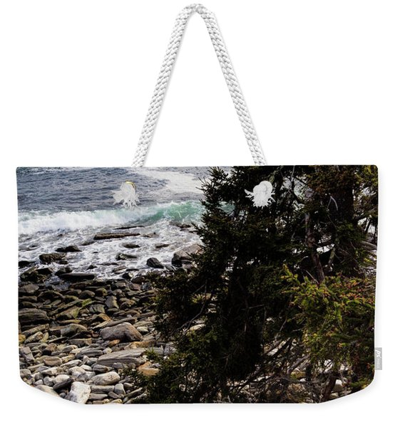 Weekender Tote Bag featuring the photograph Shore And Battered Tree, Pemaquid Point, Bristol, Maine  -60084 by John Bald