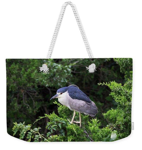 Shore Bird Roosting In A Tree Weekender Tote Bag