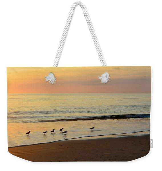 Shorebirds 9/4/17 Weekender Tote Bag