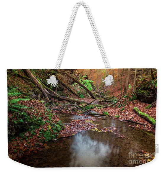 Silent Glowing Fall  Weekender Tote Bag