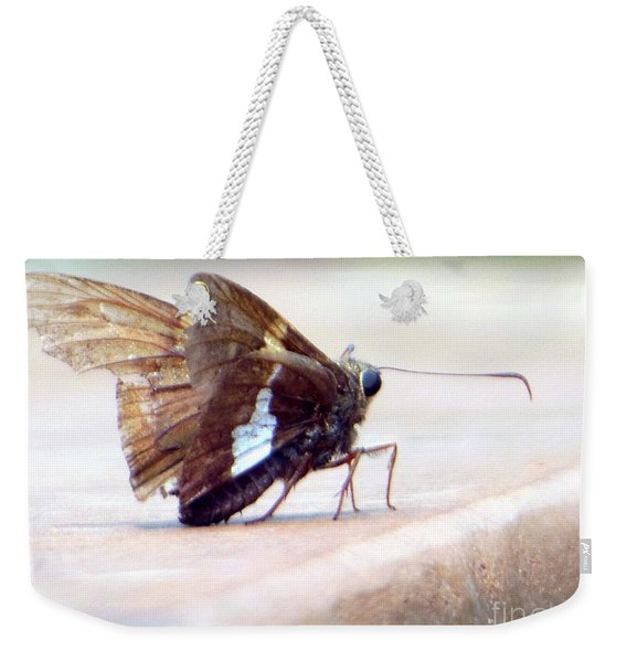 Silver Spotted Skipper Butterfly Weekender Tote Bag