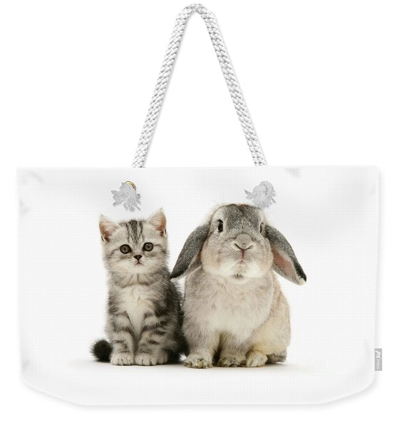 Silver Tabby And Rabby Weekender Tote Bag