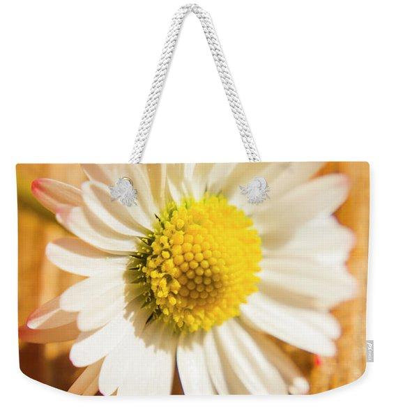 Simple Camomile  In Sunlight Weekender Tote Bag